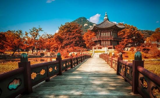 Những địa điểm chụp ảnh mùa thu đẹp nhất ở Hàn Quốc
