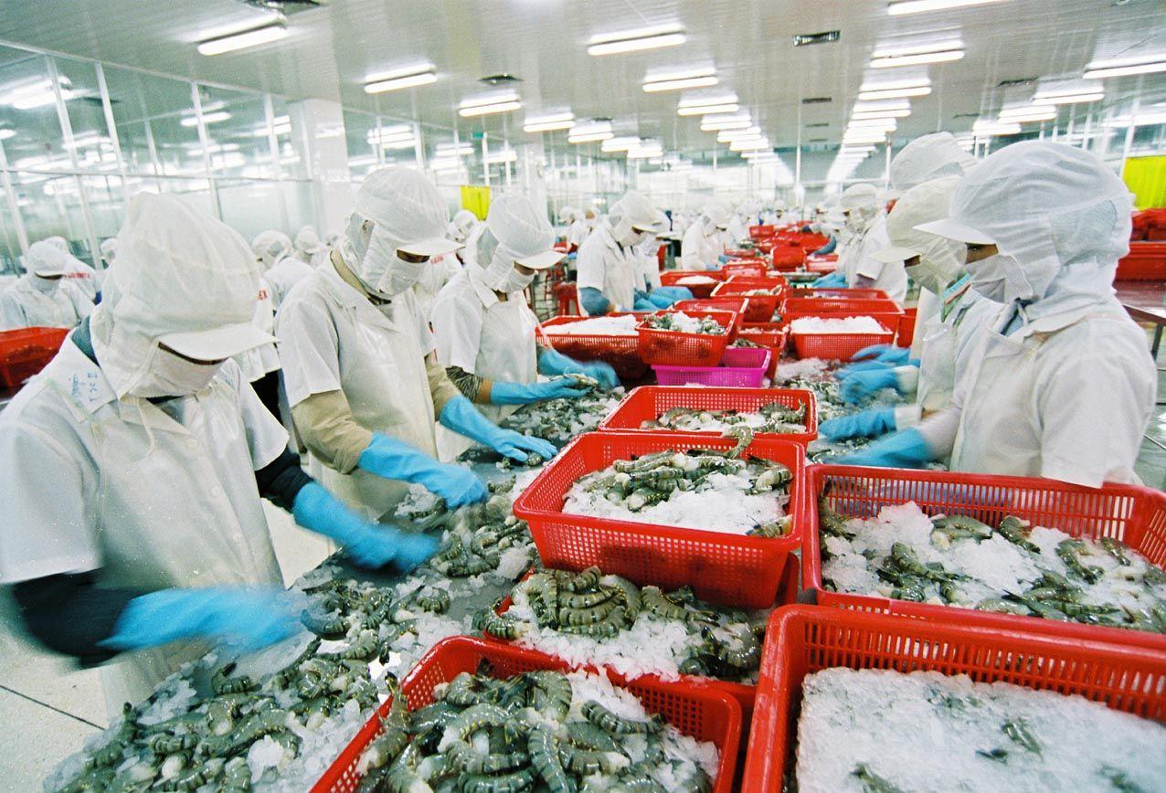 T5/2017 - Tuyển đơn hàng 09 nam Chế biến sản phẩm thủy hải sản có xử lý nhiệt