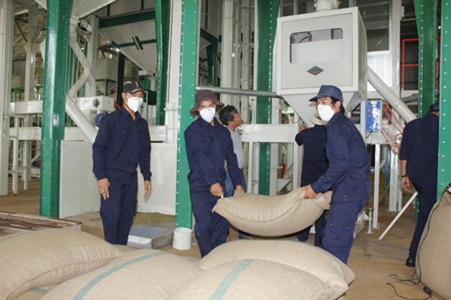 T9/2017 - Tuyển 09 nam đơn hàng Chế biến thực phẩm: Đóng gói bột nông sản tại Hyogo Nhật Bản